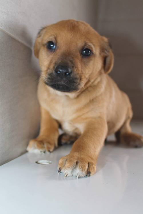 received_934314403395952.jpeg